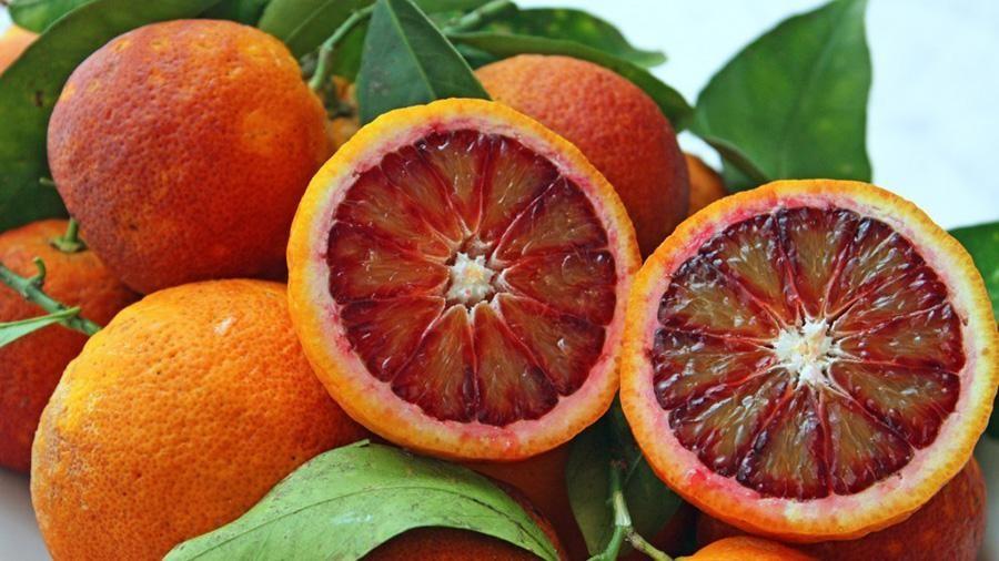 Апельсин Моро (Citrus sinensis cv. Moro) до 20 см. Кімнатний
