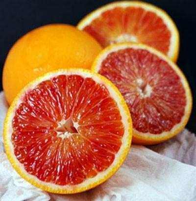 Апельсин Тарокко (Citrus sinensis Tarocco nucellare) до 20 см. Кімнатний